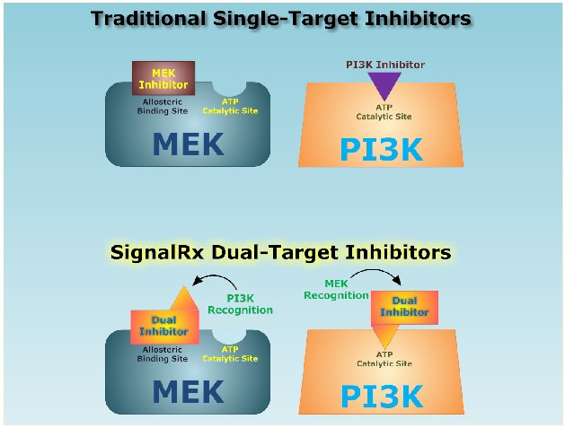 traditional single target inhibitors