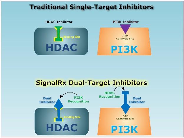 Signal RX dual target inhibitors